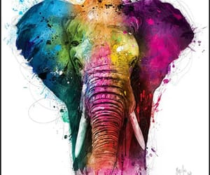 Animales and elefante image