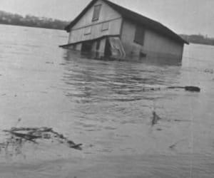 creepy, dark, and flood image