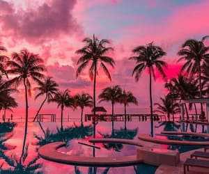 beach, pink, and palm trees image
