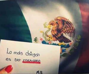 mexicanos, méxico, and 🇲🇽 image