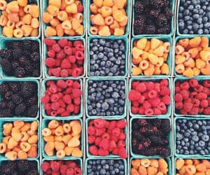 berry, blueberry, and fruit image