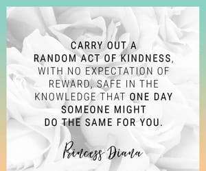 inspiration, daily motivation, and kindness image