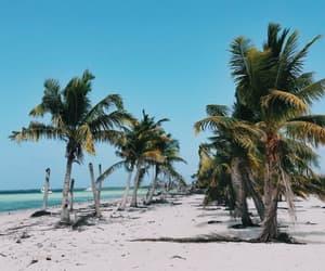 beach, mar, and playa image