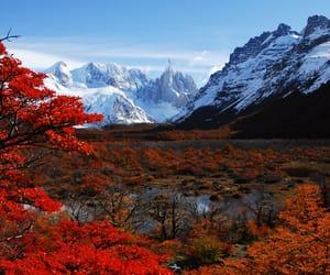 nature image