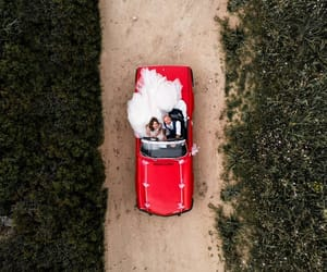 aerial photography, aerial view, and car image
