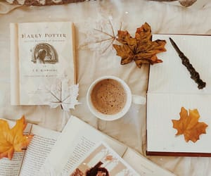 books, coffee, and leaves image