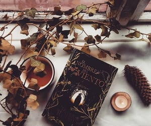 autumn, book, and books image