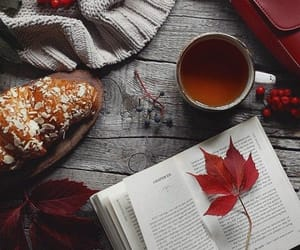 autumn, gif, and book image