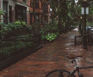 autumn and rainy image
