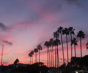 cannes, sunset, and pinksunset image