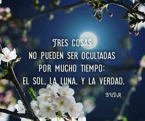buda, frases, and quotes image