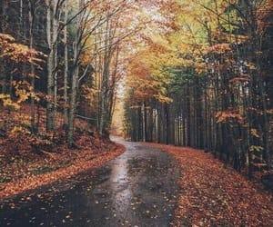article and autumn fall season cozy image