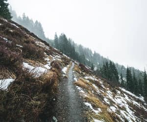 adventure, explore, and path image