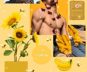 boy, sunflower, and yellow image