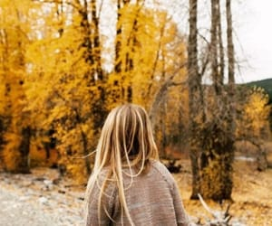 autumn, sweater weather, and fall image