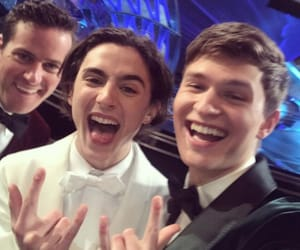 ansel elgort, timothee chalamet, and armie hammer image