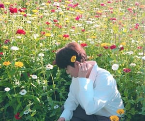 aesthetic, flowers, and k-pop image