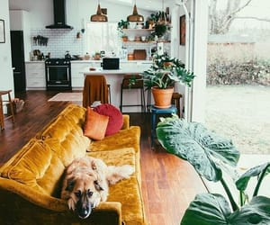goals and home image