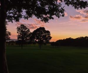 sunset, sweden, and golden hour image