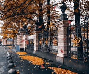 autum, city, and fall image