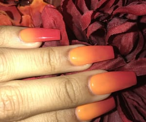 fall, long nails, and nails image