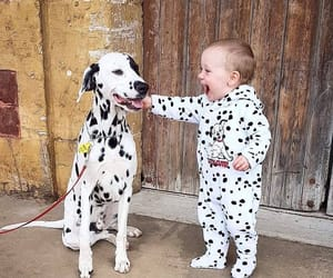 baby, spot, and dog image