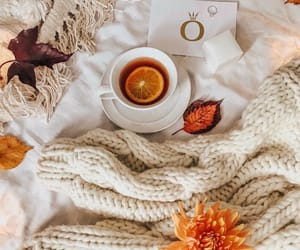 cozy and fall image