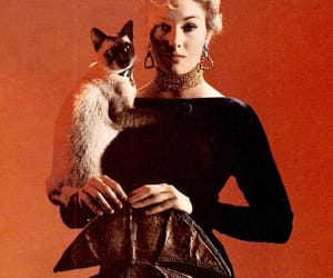 1950s, Kim Novak, and Bell Book and Candle image
