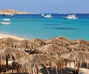 sinai from cairo, red sea tours from cairo, and submarine trip from cairo image