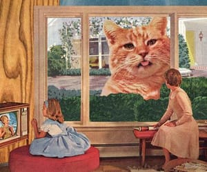 cat, vintage, and psychedelic image
