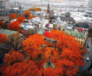 autumn, building, and city image