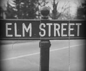 gif, street, and elm image