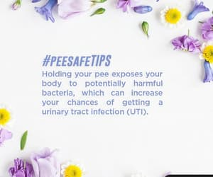 uti, uti symptoms, and peesafe image