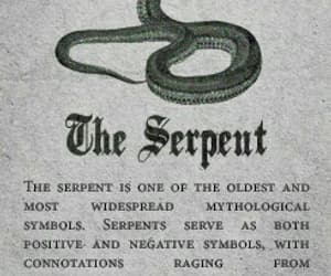 serpent, slytherin, and snake image