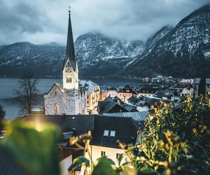austria, forest, and hallstatt image