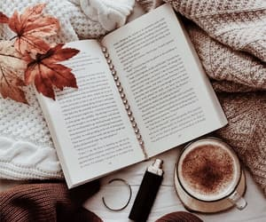 aesthetic, autumn, and blankets image