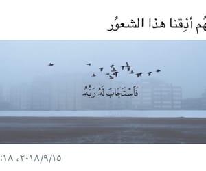 arab, islam, and دُعَاءْ image