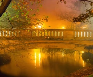 autumn colors, flickr, and fog image