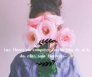 flores, frases, and rosa image