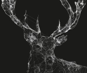 black, geometric, and stag image