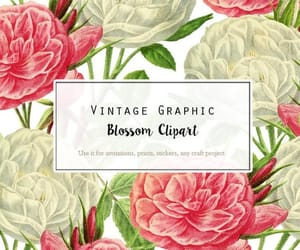etsy, rose clipart, and vintage illustration image