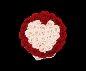 one in a million and buy white roses image