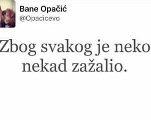 balkan, Bosnia, and neko image