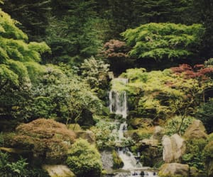 garden, waterfall, and film image