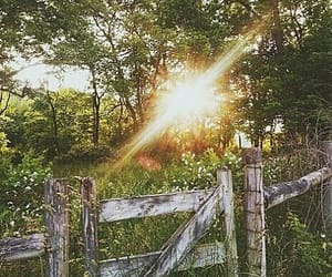 country living, farm, and gate image