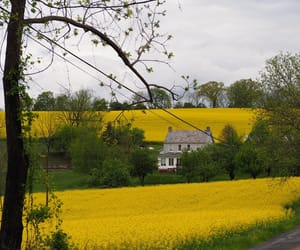countryside, farmhouse, and country living image