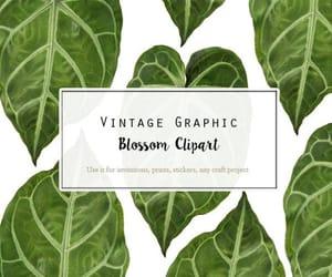 etsy, botanical prints, and botany art image