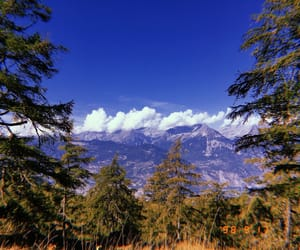 arbres, nature, and nuage image