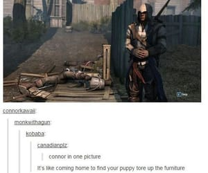assassin, Connor, and tumblr image