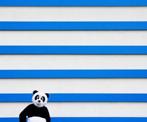 blue and white, minimalism, and facade image